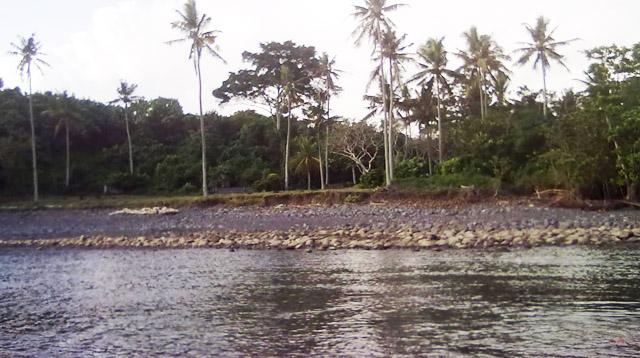 Ilustrasi muara sungai.
