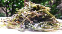 Sayur rumput laut