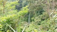 View Air Terjun, tanah dijual di Desa Wanagiri, Buleleng